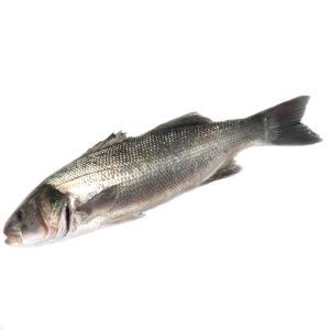 bar poisson